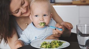Feeding toddlers: it's tricky when they're picky